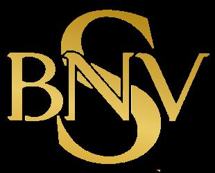 SBNV Consulting LLC